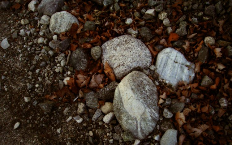 macro, stones, leaves, photo, nature, Wallpapers