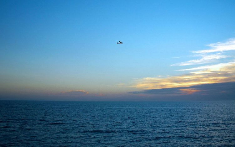 sea, horizon, sunset, sky, plane, flight