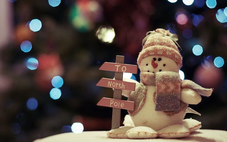 snowman, holiday, New Year