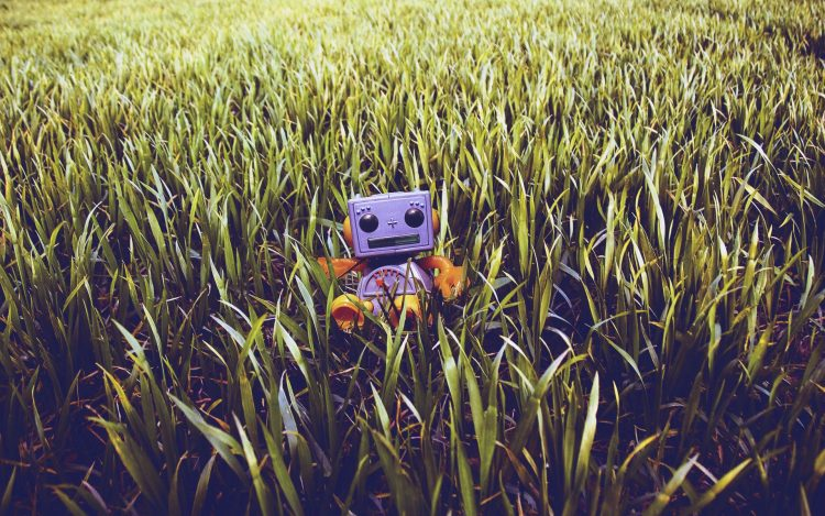grass, lawn, toy, robot, Pc, hd, wallpapers , desktop backgrounds, images, pictures