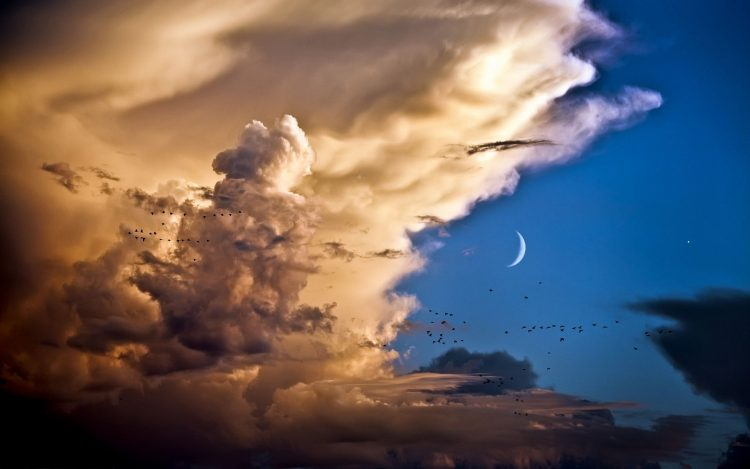 sky, clouds, Birds, Month, hd  desktop wallpapers , Pc backgrounds, free pictures