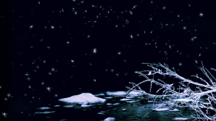 winter, ice, romance, hd  desktop wallpapers , Pc backgrounds, free pictures