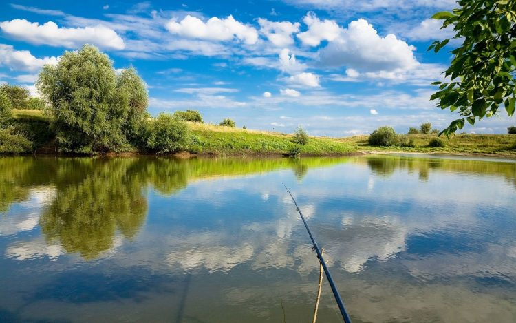 fishing, rod, wallpapers , Pc backgrounds, free photos