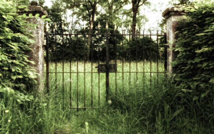 gate, grass, photo, Creative, wallpapers , Pc backgrounds, free photos
