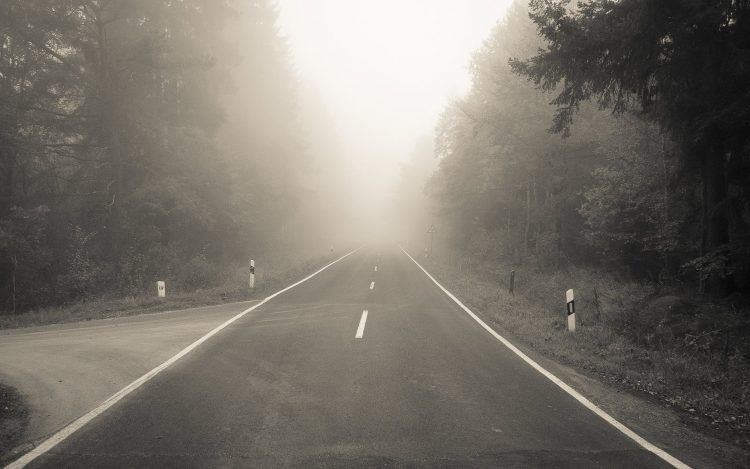forest, fog, road, layout, turn, wallpapers , Pc backgrounds, free photos