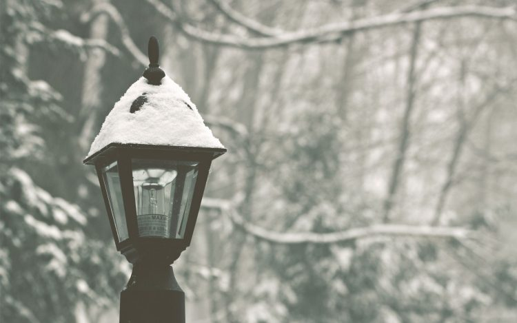 lantern, park, forest, winter, snow, wallpapers , Pc backgrounds, free photos