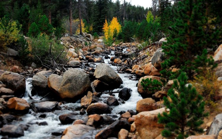 Mountains, creek, stones, sky, Trees, water, wallpapers , Pc backgrounds, free photos