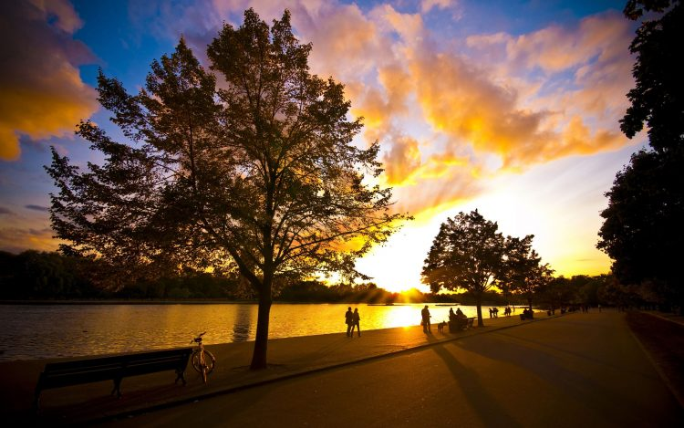 People, Park, tour, bike, river, summer, evening, wallpapers , Pc backgrounds, free photos