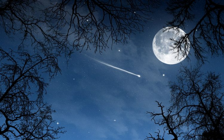 night, moon, Month, Stars, Trees, nature, wallpapers , Pc backgrounds, free photos