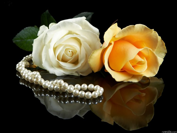 necklace and roses, wallpapers , Pc backgrounds, free photos