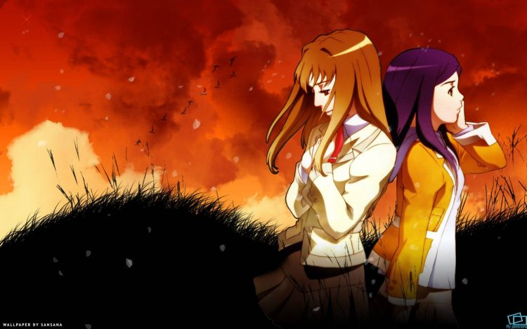 anime, girl, picture, plot, an episode. picture 05, wallpapers , Pc backgrounds, free photos