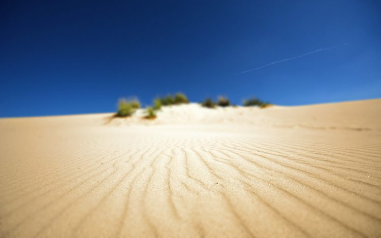 desert, beach, sand, Landscapes, Africa, wallpapers , Pc backgrounds, free photos