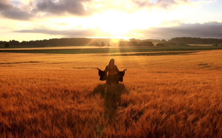 field, solnzhtse, horizon, girl, wallpapers , Pc backgrounds, free photos